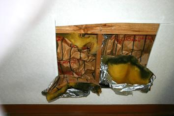 断熱材のカビ(充填断熱)